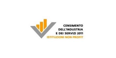 """Censimento Non Profit 2011 – """"Domande e risposte"""" a cura di Csvnet"""