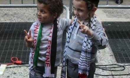 Raccolta di medicinali per Gaza