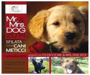 """""""Mr & Mrs. Dog"""" una serata dedicata ai nostri amici a quattro zampe"""