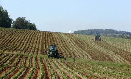 Agricoltura sociale, al via il censimento nazionale