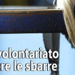 Disponibile il n. 9 del magazine Volontariato Puglia