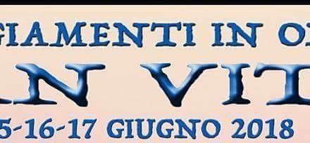 Festeggiamenti in onore di San Vito
