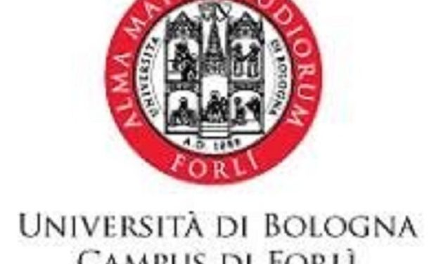 Master universitario inFundraising, Borse di Studio da oltre 7.000€ per i giovani pugliesi