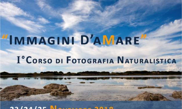 """""""Primo corso base di fotografia naturalistica"""""""