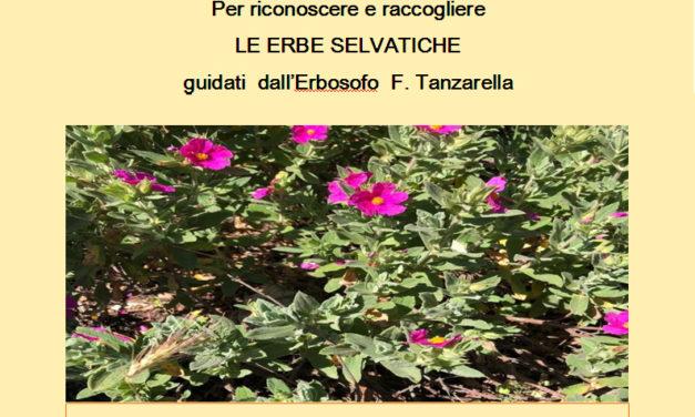 """Domenica 18 novembre escursione """"etnobotanica"""" guidata a Manduria"""