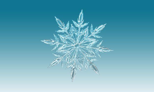 Chiusura uffici CSV per le festività natalizie