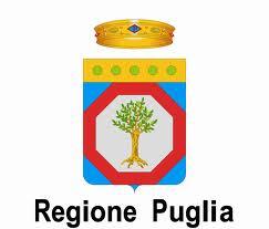 Linee guida regionali Terzo settore – RED 3.0 II Edizione