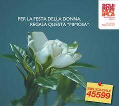 Gardenia-dellAISM 2