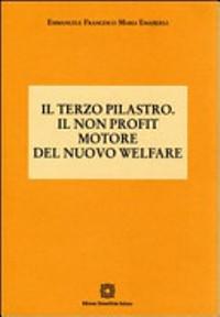 Il terzo pilastro. Il non profit motore del nuovo welfare di Emmanuele Francesco Maria Emanuele, edizioni Scientifiche Italiane 2008