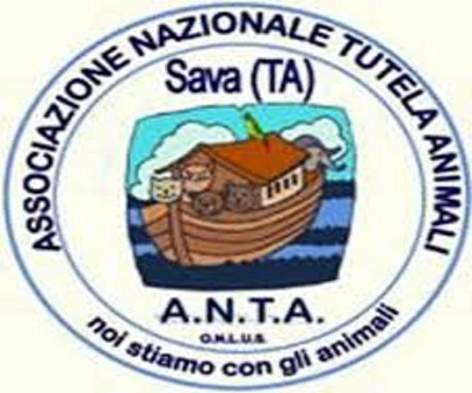 Modifica della legge della Regione Puglia n. 12/95 in materia di randagismo, incontro sul tema