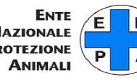 Attivo il servizio telefonico ENPA per i nostri animali domestici