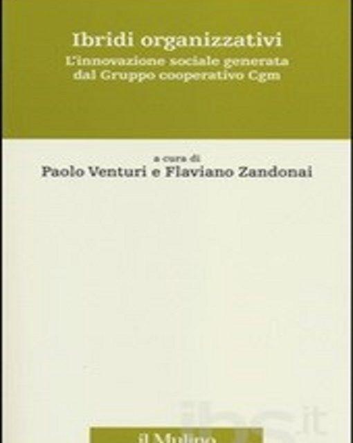 Ibridi organizzativi. L'innovazione sociale generata dal gruppo cooperativo Cgm di Paolo Venturi e Flaviano Zandonai, edizione Il Mulino 2014