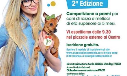 """La """"Festa del cane"""""""