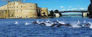 A Taranto una manifestazione per salvare i delfini