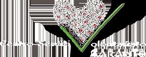 CSV Taranto