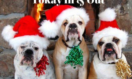 """""""Babbi non solo a Natale"""", lo spettacolo teatrale dei Tokay In & Out"""