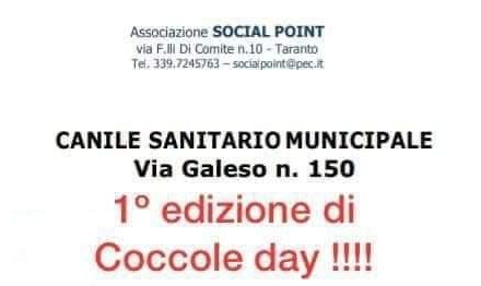 """""""Coccole Day 2020"""""""
