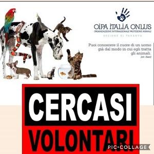 La sezione di Taranto dell'OIPA cerca nuovi volontari